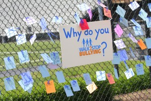 Why Do You Walk Fence 2013-210